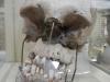 Oude schedel met bijzonder versieringen bij de voortanden
