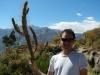 Sander met cactus