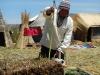 Het opperhoofd legt uit hoe het riet groeit