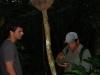 De gids vertelt ons over termieten bij een termietennest
