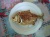 De lunch, een lekker stukje zelfgevangen pirana