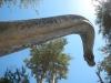 Zo zag het er 65 miljoen jaar geleden uit als je naar boven keek
