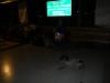 Leo en de zwerfhond op het busstation