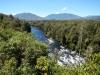 Wilde rivier midden in de bossen