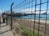 Tja, wie zit er nu achter het hek? De toerist of de zeeleeuw?