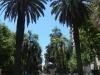 Zonnetje, palmbomen... Ik kan er wel aan wennen