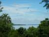 Af en toe zijn er prachtige doorkijkjes naar de rivier en Uruguay aan de overkant