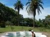 De eerste palmbomen komen in zicht