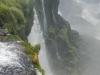 In combinatie met het groene mos ontstaat er een mooi beeld