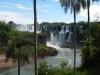 Ook de palmbomen dragen bij aan een bijzondere sfeer in dit natuurpark
