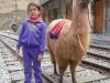 Een kindje dat op de foto wil met een lama, maar eigenlijk bang is